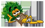 Arborist in Greenville, SC