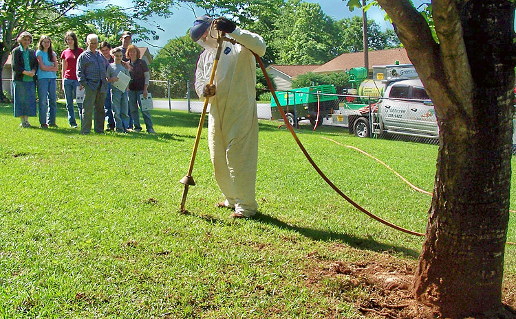 arborist performing root work on a declining tree